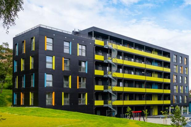 Budownictwo z drewnianych prefabrykatów ma przyszłość