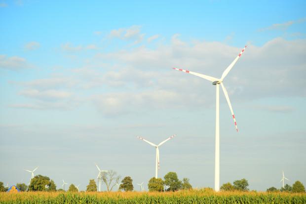 EDP Renewables od 10 lat stawia wiatraki w Polsce. Jak zmienił się rynek?