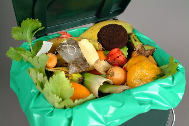Polska w czołówce państw UE marnujących najwięcej żywności