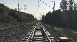 Kolejnemu samorządowi nie podoba się trasa kolei do CPK