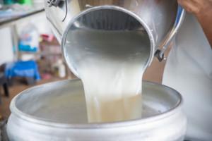 Niepewne bezpieczeństwo energetyczne firm mleczarskich