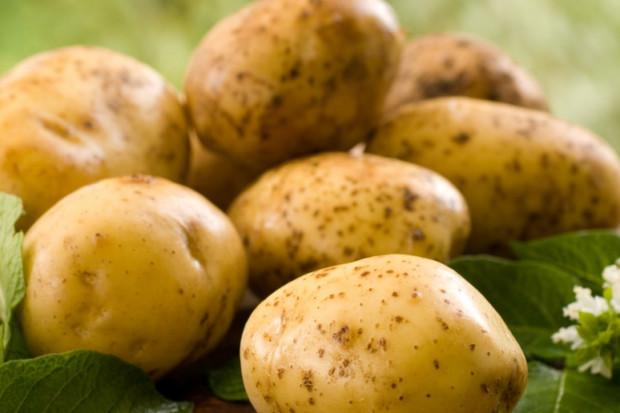 W Egipcie policja wkracza do walki z niedoborem i drożyzną ziemniaków