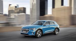 Diesle biją w wyniki Audi