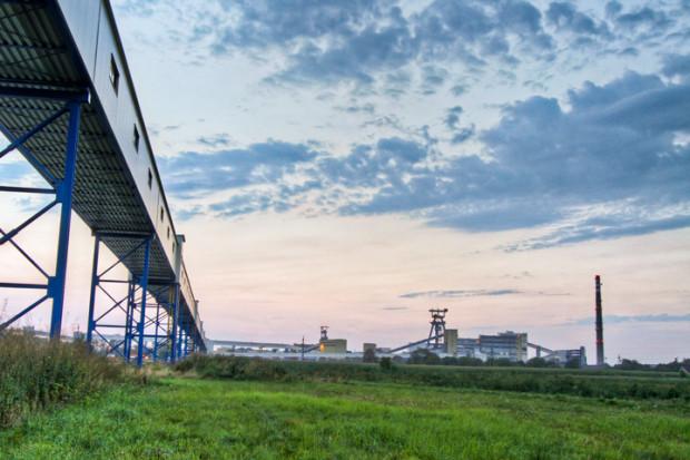 TFI PZU sprzedają akcje Lubelskiego Węgla