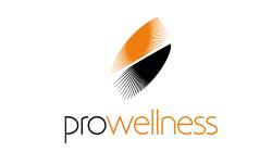 Pro-Wellness Park - Fotele Masujące i Ogrodowe Wanny Spa marki Hot Spring