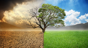 Strajki klimatyczne na całym świecie