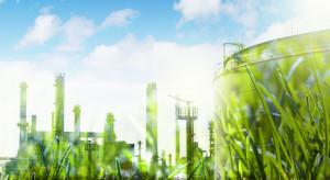 Druga odsłona zielonego kongresu - innowacje i środowisko