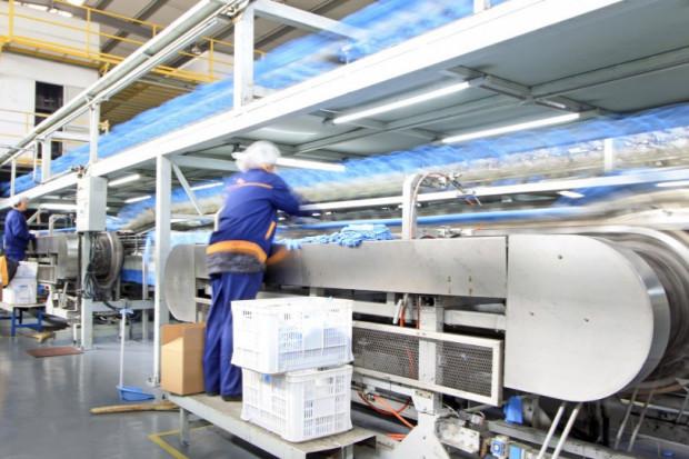 Produkcja przemysłowa poniżej prognoz