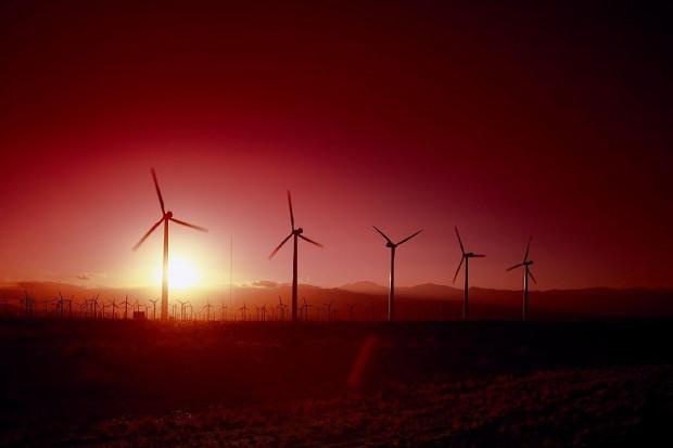 PSEW: Odblokowanie energetyki wiatrowej to sposób na niższe ceny energii