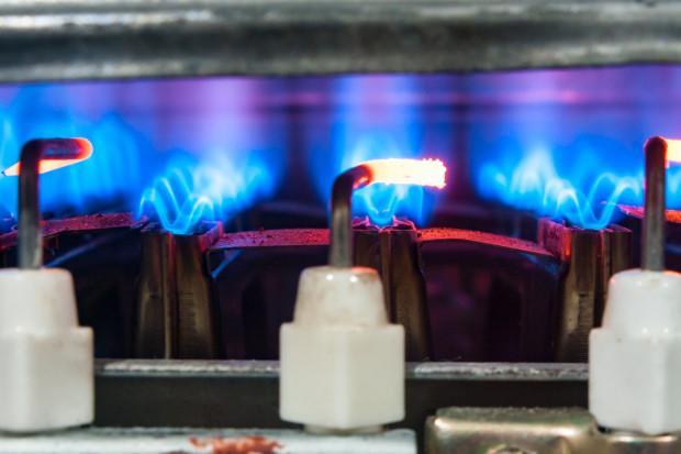 Ponad połowa nowych domów jednorodzinnych ogrzewana gazem