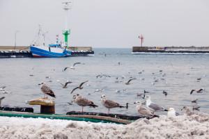Alarmujący raport NIK. 27 polskich portów tonie