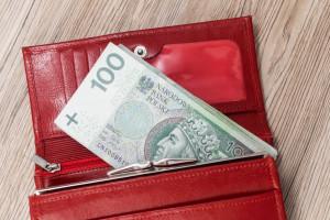 PFR: 13 instytucji finansowych chce oferować PPK