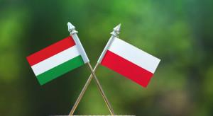Na tym polu Polak i Węgier to dwa bratanki