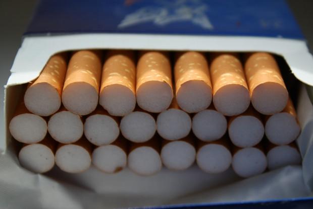 Produkcja, sprzedaż i eksport wyrobów tytoniowych mogą okazać się niemożliwe
