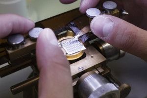 Polski producent elektroniki notuje rekord i wchodzi w nowy obszar działalności