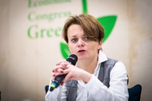 Jadwiga Emilewicz: Polski mix energetyczny potrzebuje zmian