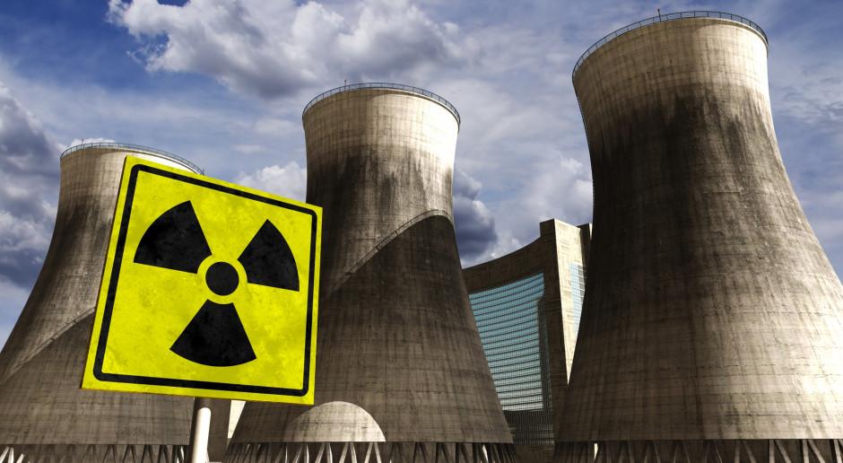 Energetyka jądrowa pozostaje w agendzie rządu. USA faworytem do współpracy