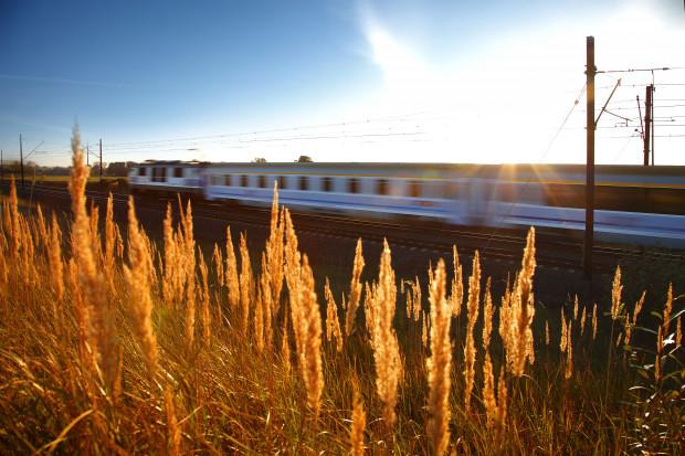 PKP Intercity rozszerza siatkę połączeń międzynarodowych