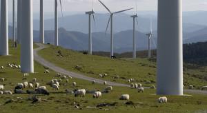 Będzie łatwiej budować wiatraki na lądzie. Zmiany w prawie jeszcze w tym półroczu