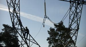 Energa zostanie pionierem. Zdobyła 166 mln zł
