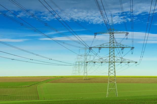 Rząd zajmie się rekompensatami dla branż energochłonnych