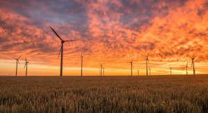 Rząd PiS opóźniał OZE, bo czekał na zgodę na rynek mocy dla elektrowni węglowych