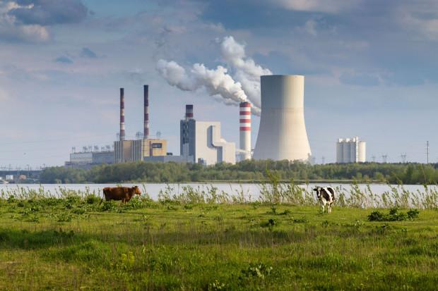Węgiel jest nam coraz mniej potrzebny