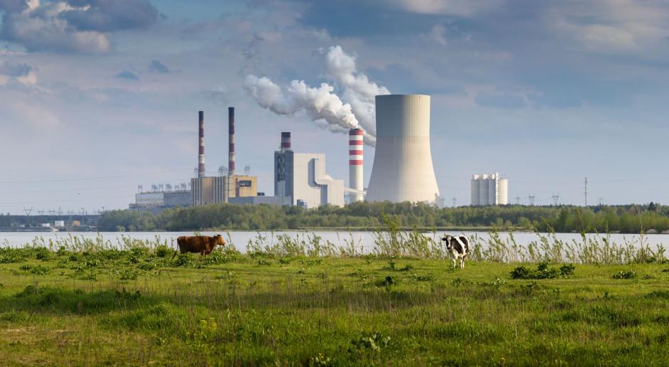 Elektrownia Kozienice wraz z nowym blokiem 1075 MW, fot. Shutterstock