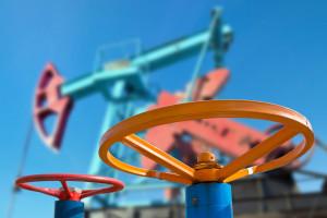 Polska gotowa pomóc Białorusinom z dostawami ropy