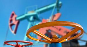 Mińsk zainteresowany amerykańską ropą. Chce wywrzeć wpływ na Rosję