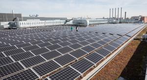 """Gigant w opakowaniach chce tylko """"zielonej"""" energii"""