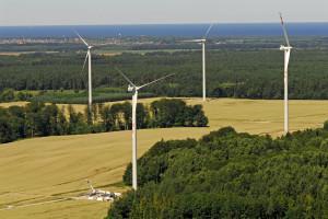Tauron chce inwestować w energetykę wiatrową i fotowoltaikę