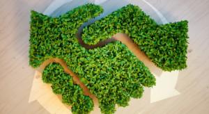 Polski biznes chce być odpowiedzialny ekologicznie. Jest nowa inicjatywa
