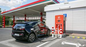 W Polsce podwoiła się liczba samochodów elektrycznych