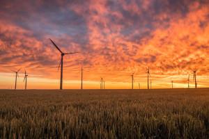 Odnawialne źródła energii w Polsce. Branża czeka na kolejną nowelizację ustawy