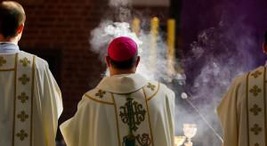 Kościół będzie nawracał na ekologię? Biskupi mają propozycję