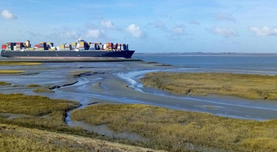 Porty w Antwerpii i Zeebrugge rozpoczną rozmowy o fuzji