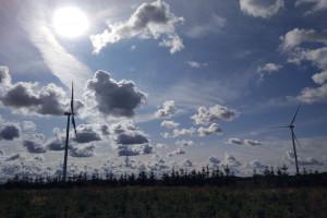 Dobre wyniki PGE, pomogły darmowe emisje