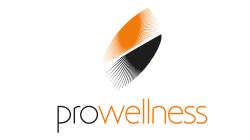 Pro-Wellness Sp.J. - autoryzowny dystrybutor: HotSpring oraz QuanGarden Art