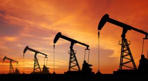 OPEC i Rosja zmniejszą wydobycie ropy, by podtrzymać ceny surowca