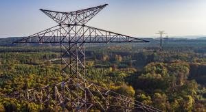 Polska coraz większym importerem prądu