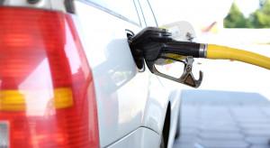 Irańskie emocje jeszcze nie dotarły na polskie stacje paliw