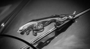 Importer samochodów znanej marki złożył wniosek o zawieszenie notowań na GPW