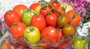 Pomidory online. W Tajlandii to coraz bardziej popularne
