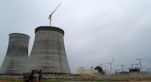 Litwini protestują przeciwko elektrowni atomowej w Ostrowcu
