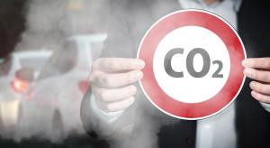 Polacy odpowiadają za 17 proc. rocznej emisji w kraju