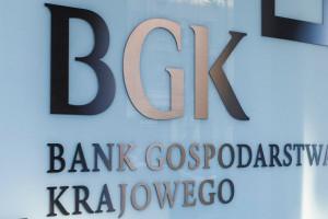 BGK planuje otworzyć kolejne zagraniczne przedstawicielstwa