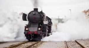 Koleje Wielkopolskie wprowadzają dodatkowe pociągi z parowozami