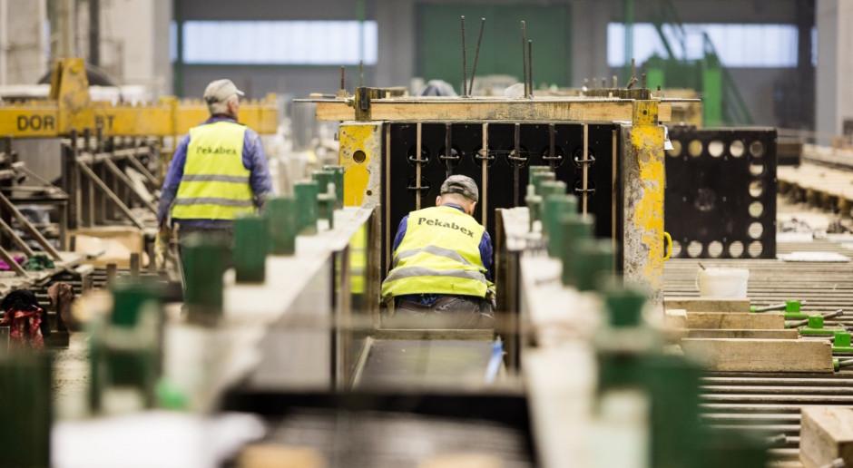Pekabex chce za 14,8 mln euro przejąć niemiecką spółkę