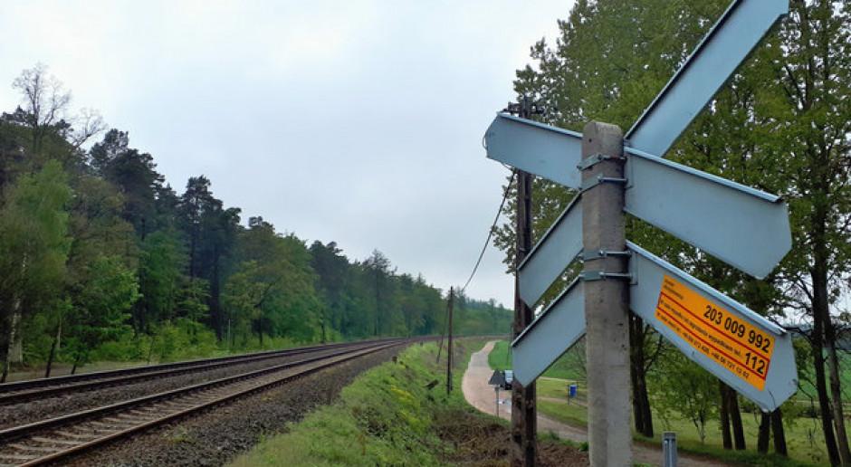 PKP ogłosiły przetarg na dokumentację projektową linii nr 203